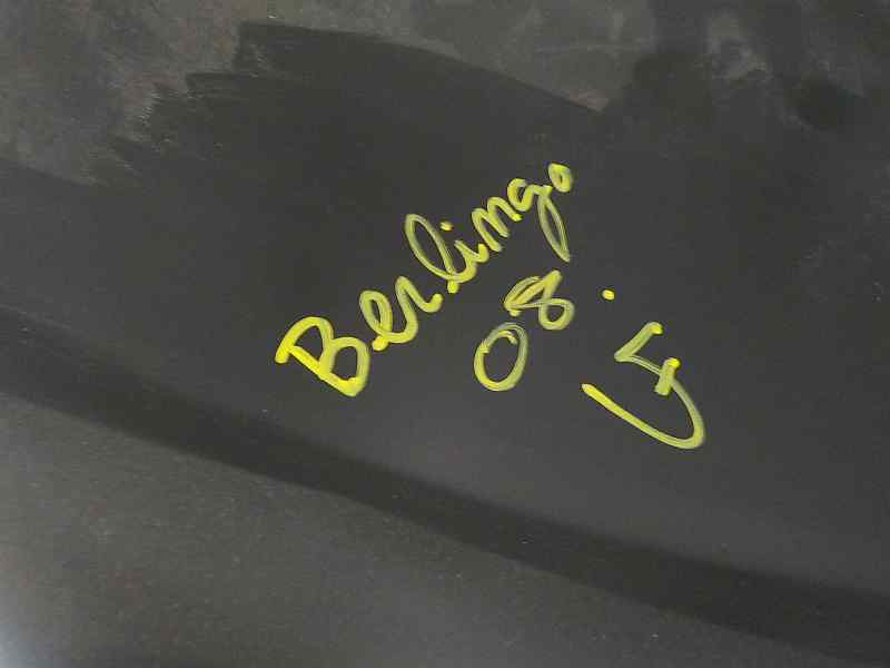 ALETA DELANTERA DERECHA CITROEN BERLINGO CUADRO X  1.6 16V CAT (NFR / TU5JP4B) (90 CV) |   04.08 - 12.12_img_1