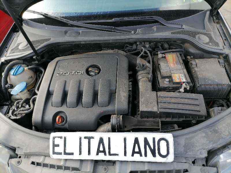 AUDI A3 (8P) 2.0 TDI Limited Edition (103kW)   (140 CV)     07.07 - ..._img_5