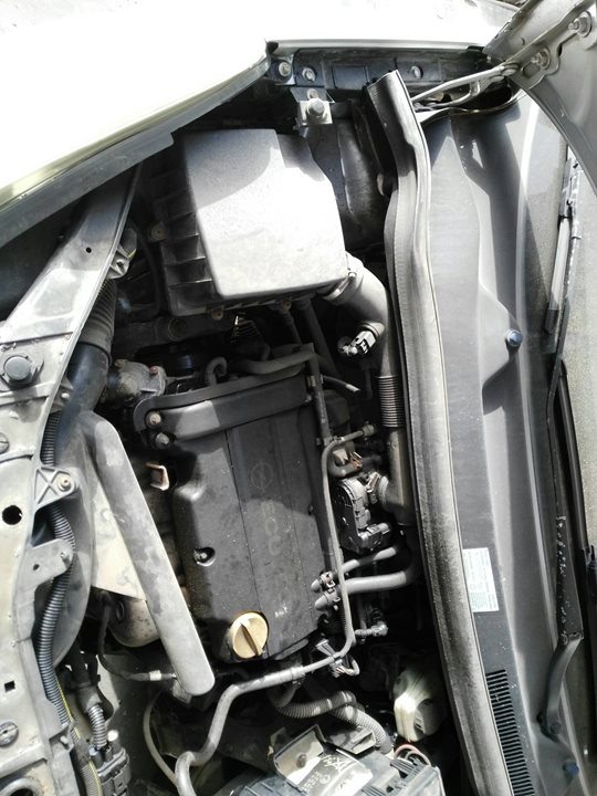 OPEL CORSA D Limited Edition  1.2 16V CAT (Z 12 XEP / LB4) (80 CV)     06.08 - ..._img_1