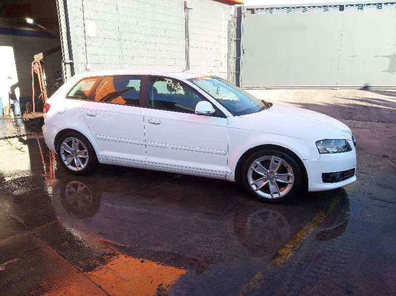 DEPOSITO LIMPIA AUDI A3 SPORTBACK (8P) 1.9 TDI Ambition   (105 CV) |   09.04 - 12.09_img_1