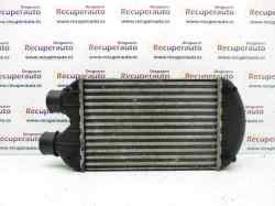 INTERCOOLER FIAT BRAVA (182) TD 100 ELX  1.9 Turbodiesel (101 CV) |   09.96 - ..._mini_0