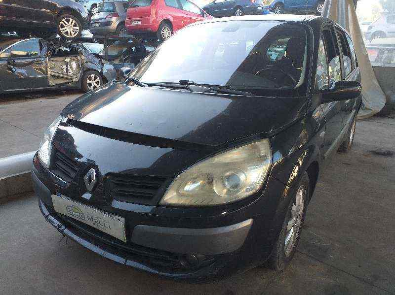 RENAULT SCENIC II Grand Dynamique  1.9 dCi Diesel FAP (131 CV) |   10.06 - 12.09_img_0