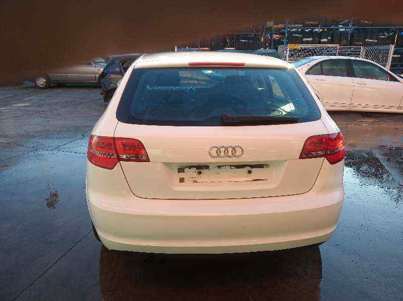 DEPOSITO LIMPIA AUDI A3 SPORTBACK (8P) 1.9 TDI Ambition   (105 CV) |   09.04 - 12.09_img_5