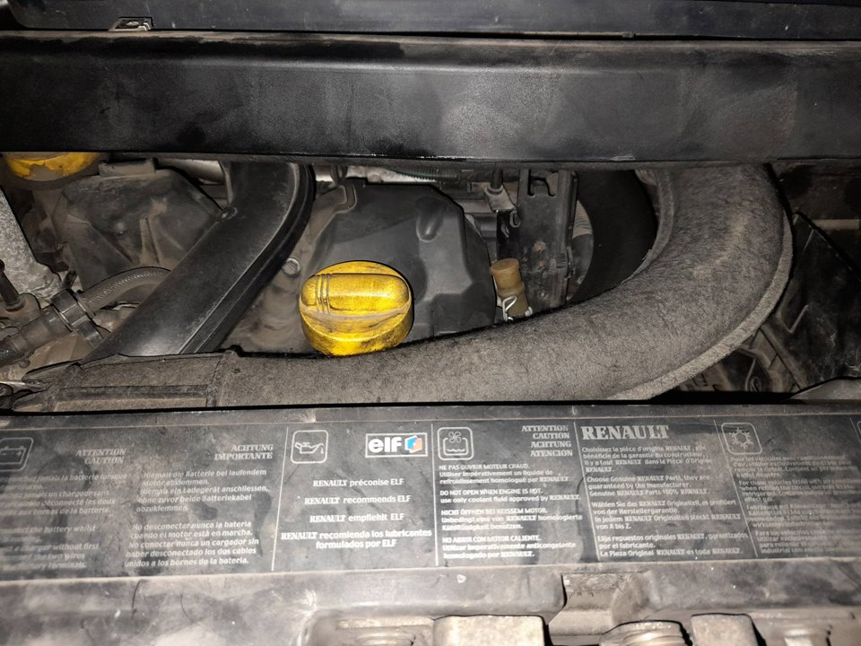 BRAZO LIMPIA TRASERO RENAULT MODUS Confort Dynamique  1.5 dCi Diesel (82 CV) |   08.04 - 12.06_img_2